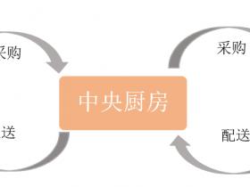 中央厨房配送加盟直营门店的连锁管理平台,odoo集团多公司供应链实例